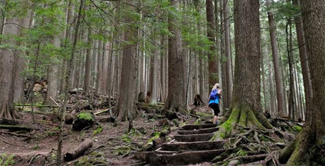 New Funding for Grouse Mountain Regional Park