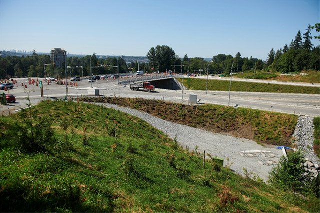 Biosolids Beautify Mountain Highway Interchange - After